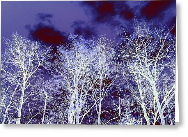 Greeting Card featuring the photograph What Lies Above by Shana Rowe Jackson