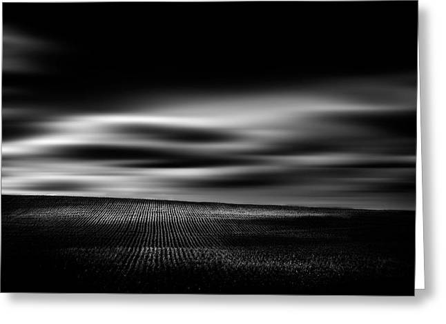 Greeting Card featuring the photograph Wheat Abstract by Dan Jurak