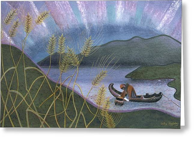 Wheat And Northern Lights Greeting Card by Sally Appleby