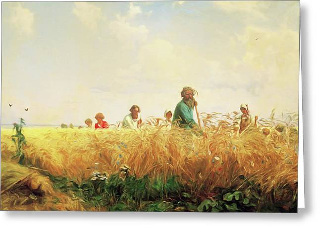 Wheat Field In The Summer Greeting Card