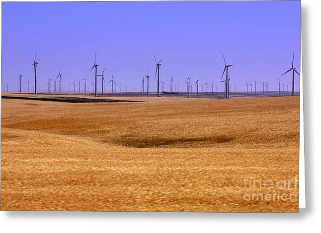 Wheat Fields And Wind Turbines Greeting Card by Carol Groenen