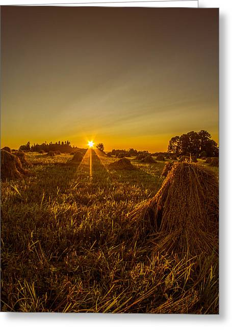 Greeting Card featuring the photograph Wheat Shocks by Chris Bordeleau