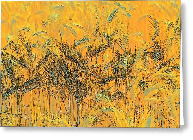 Wheatscape 6343 Greeting Card