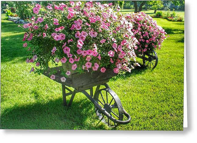 2004 - Wheel Barrow Full Of Flowers Greeting Card