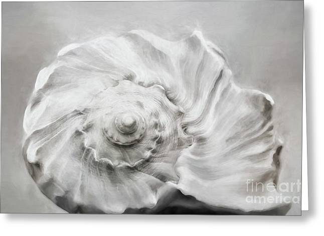 Greeting Card featuring the photograph Whelk In Black And White by Benanne Stiens