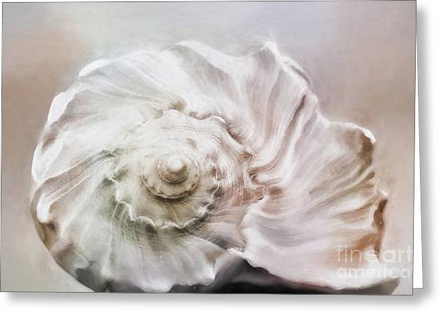 Greeting Card featuring the photograph Whelk Shell by Benanne Stiens