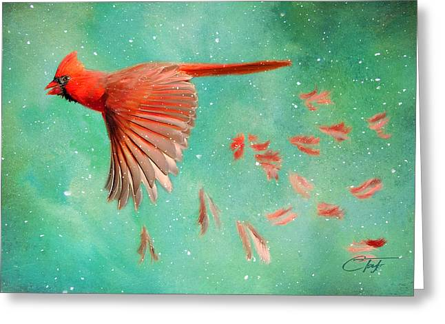 When Feathers Fly Greeting Card