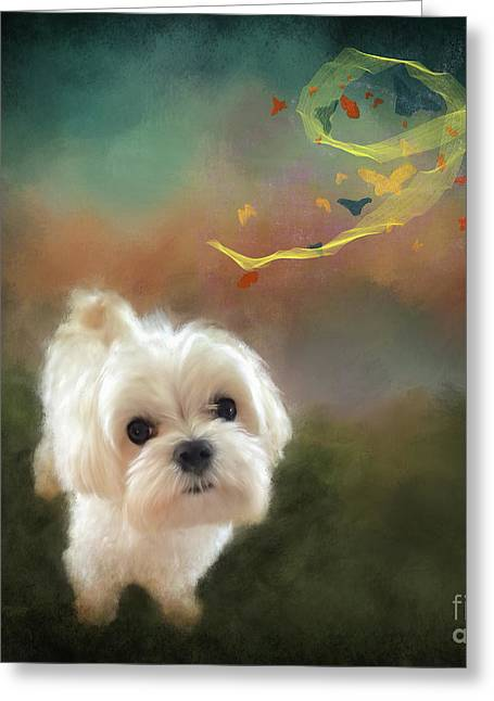 When Puppies Get Confused Greeting Card by Lois Bryan