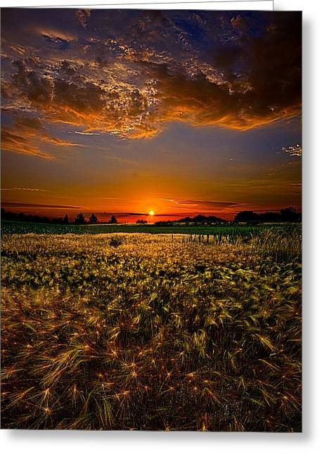When Time Stood Still Greeting Card by Phil Koch