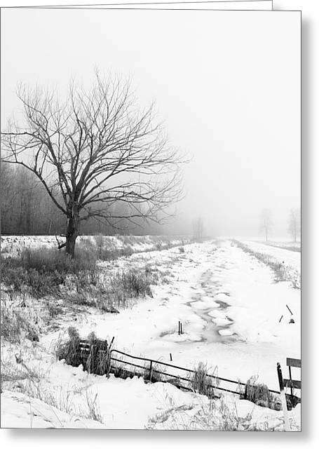 When Winter Comes Greeting Card by Cathy  Beharriell