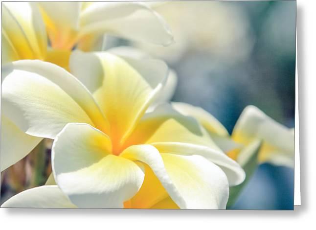 Where Happy Spirits Dwell - Cearnach Greeting Card