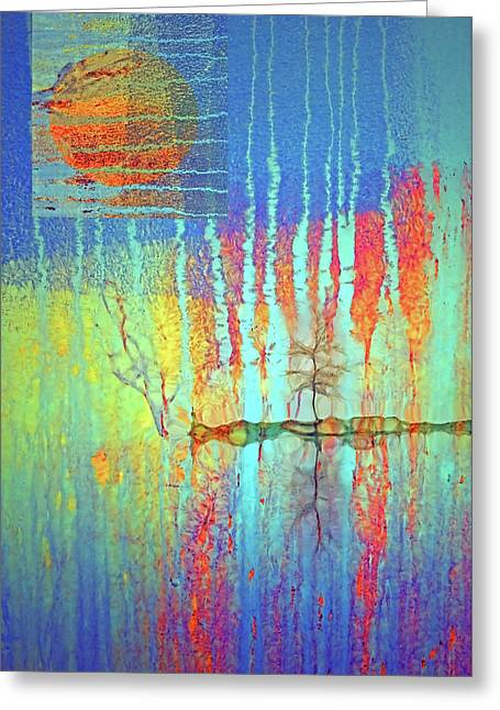 Greeting Card featuring the photograph Where Have All The Trees Gone? by Tara Turner