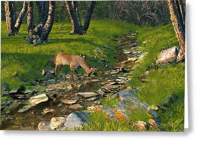 Where The Buck Stops Greeting Card