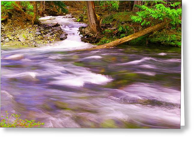 Greeting Card featuring the photograph Where The Stream Meets The River by Jeff Swan