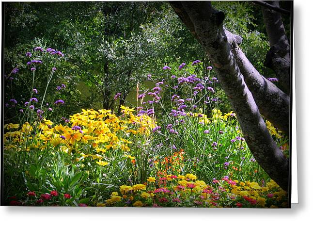 Where The Wild Flowers Grow Greeting Card by Trina Prenzi