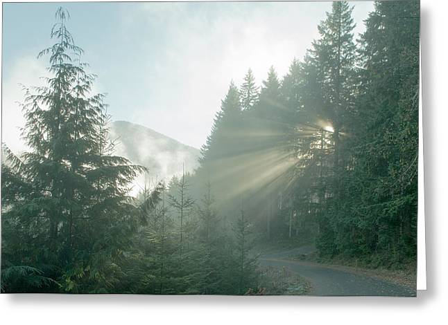 Where Will Your Road Take You? Greeting Card