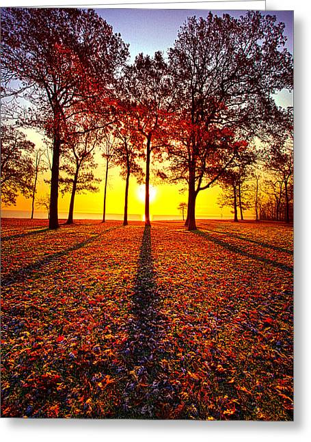 Where You Have Been Is Part Of Your Story Greeting Card by Phil Koch