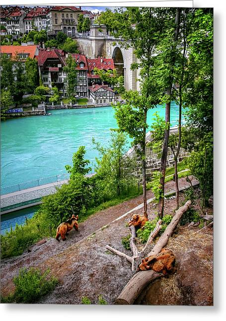 Where's Goldilocks? Bern Switzerland  Greeting Card by Carol Japp
