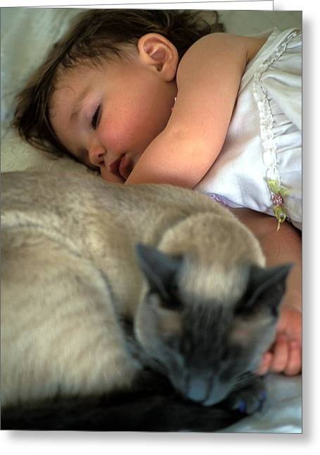 Cat Prints Photographs Greeting Cards - While Baby Sleeps Greeting Card by Kathy Yates