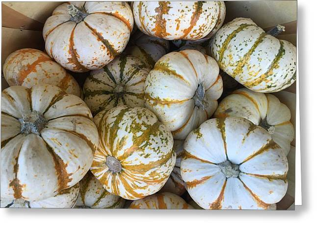 Whimsical Pumpkins Greeting Card by Russell Keating
