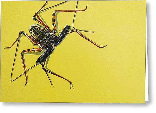 Whip Scorpion Greeting Card