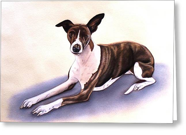 Greyhound Dog Pastels Greeting Cards - Whippet Greeting Card by Lucy Deane