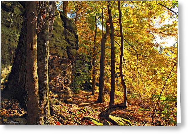 Greeting Card featuring the photograph Whipp's Ledges In Autumn by Joan  Minchak
