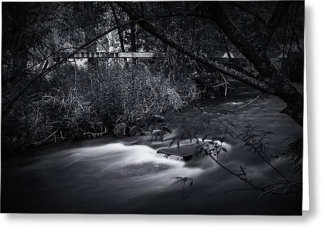 Greeting Card featuring the photograph Whispering Brooke by Tim Nichols