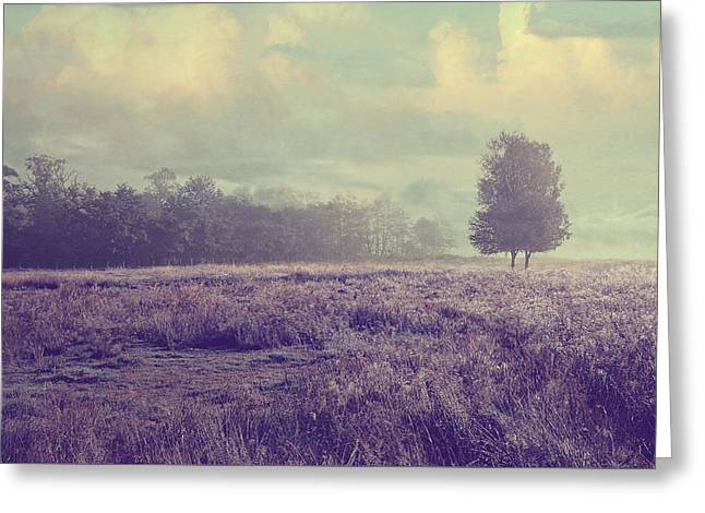 Whispering Fields Greeting Card by Jenny Rainbow