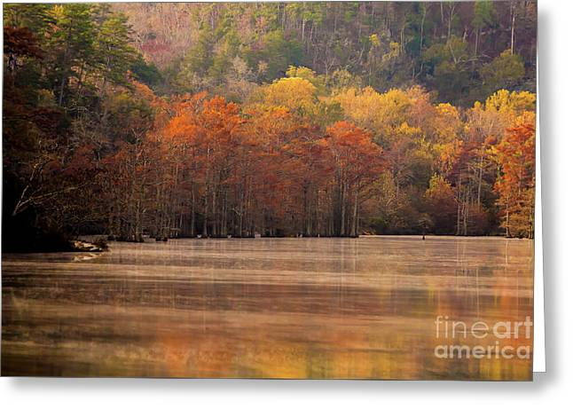 Greeting Card featuring the photograph Whispering Mist by Iris Greenwell