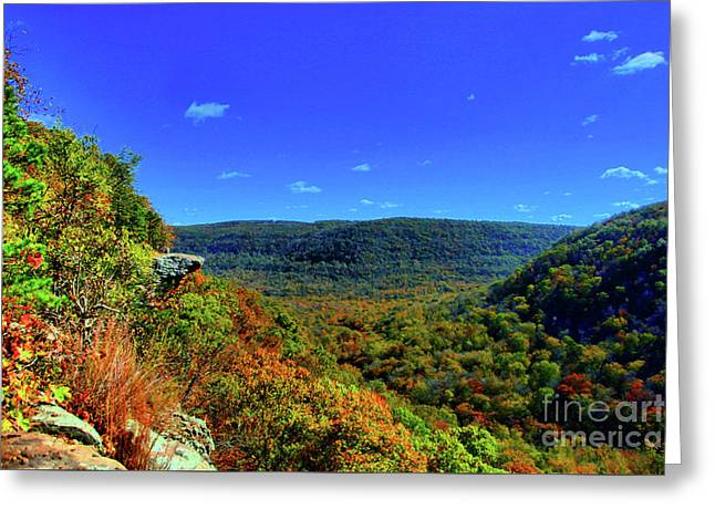 Whitaker Point Greeting Card by Kevin Kuchler