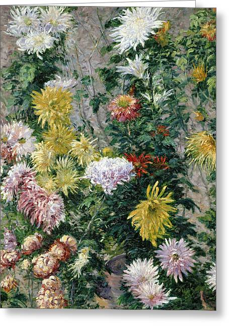 White Paintings Greeting Cards - White and Yellow Chrysanthemums Greeting Card by Gustave Caillebotte