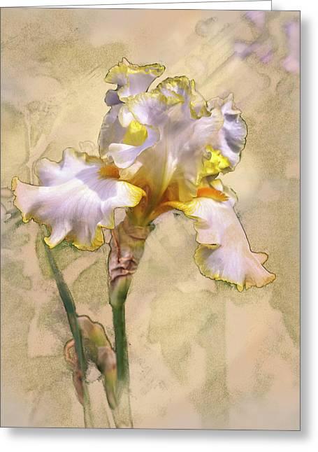 White And Yellow Iris Greeting Card