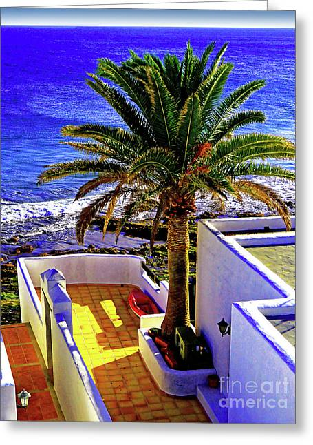 Palmy Sea View Greeting Card by Wilf Doyle