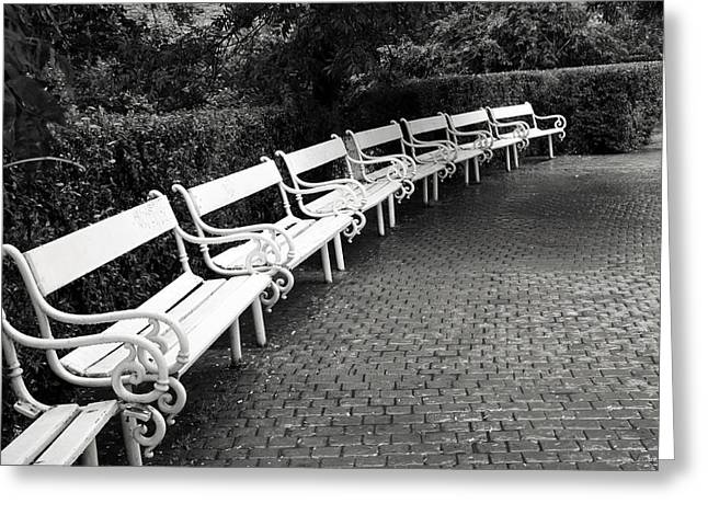 White Benches-  By Linda Wood Woods Greeting Card by Linda Woods