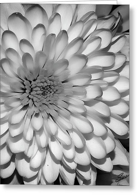 White Bloom Greeting Card