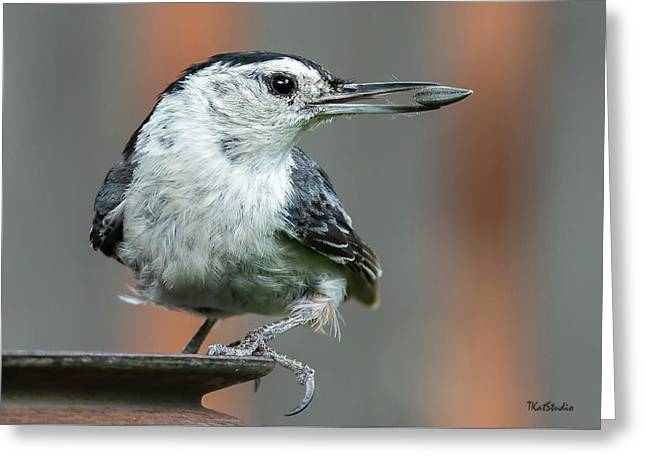 White-breasted Nuthatch With Sunflower Seed Greeting Card