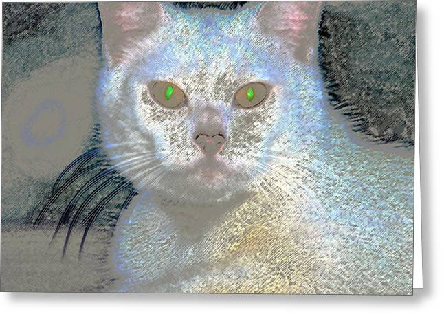 White Cat Green Eyes Greeting Card by David Lee Thompson