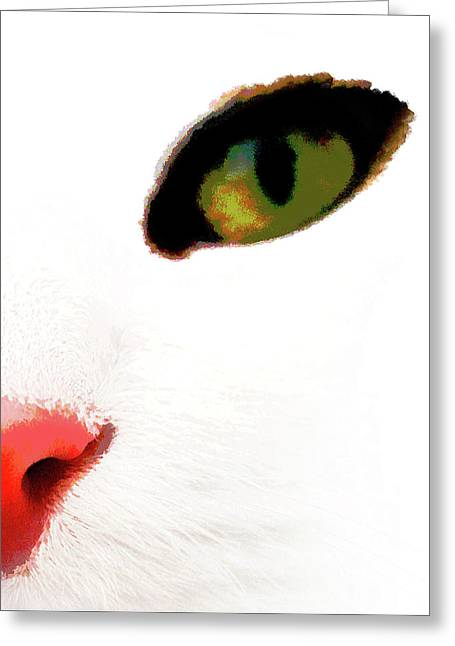 White Cats Face Greeting Card