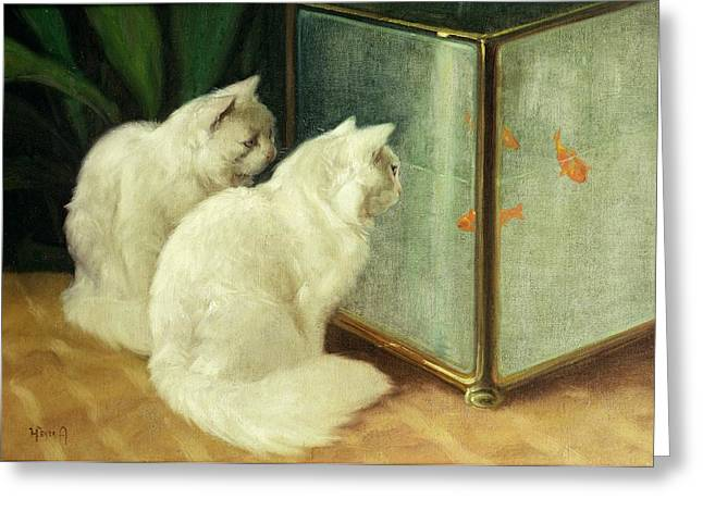 White Fur Greeting Cards - White Cats Watching Goldfish Greeting Card by Arthur Heyer