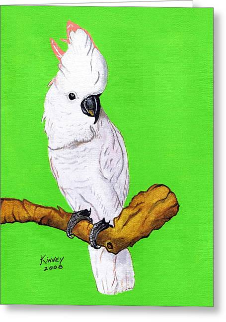 White Cockatoo Greeting Card by Jay Kinney