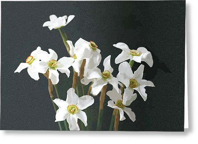 Easter Flowers Pyrography Greeting Cards - White Daffodils Greeting Card by Stefan Petrovici