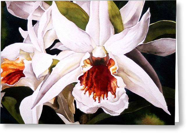 White Dendrobium Orchid Greeting Card