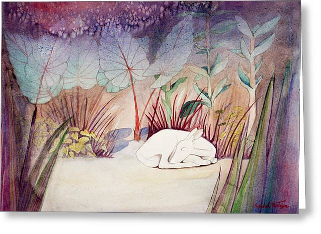 White Doe Dreaming Greeting Card