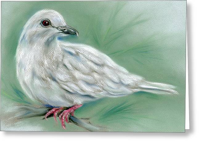 White Dove In The Pine Greeting Card
