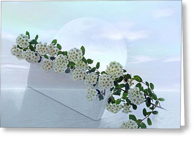 White Dream 2 Greeting Card by Manfred Lutzius