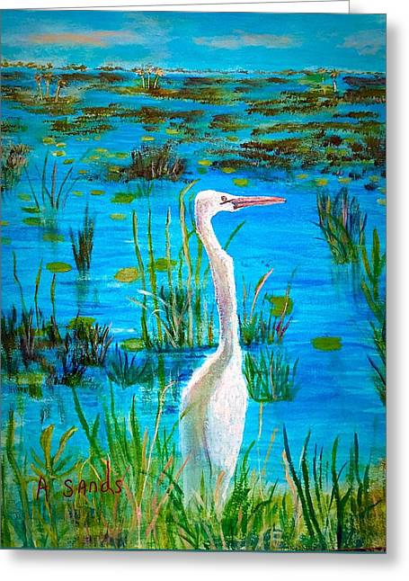 White Egret In Florida Greeting Card