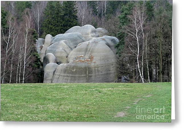 White Elephant Rocks Greeting Card by Michal Boubin