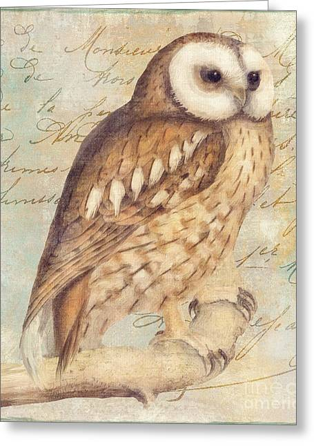 White Faced Owl Greeting Card by Mindy Sommers