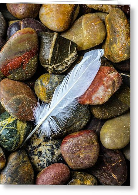 White Feather On River Stones Greeting Card by Garry Gay